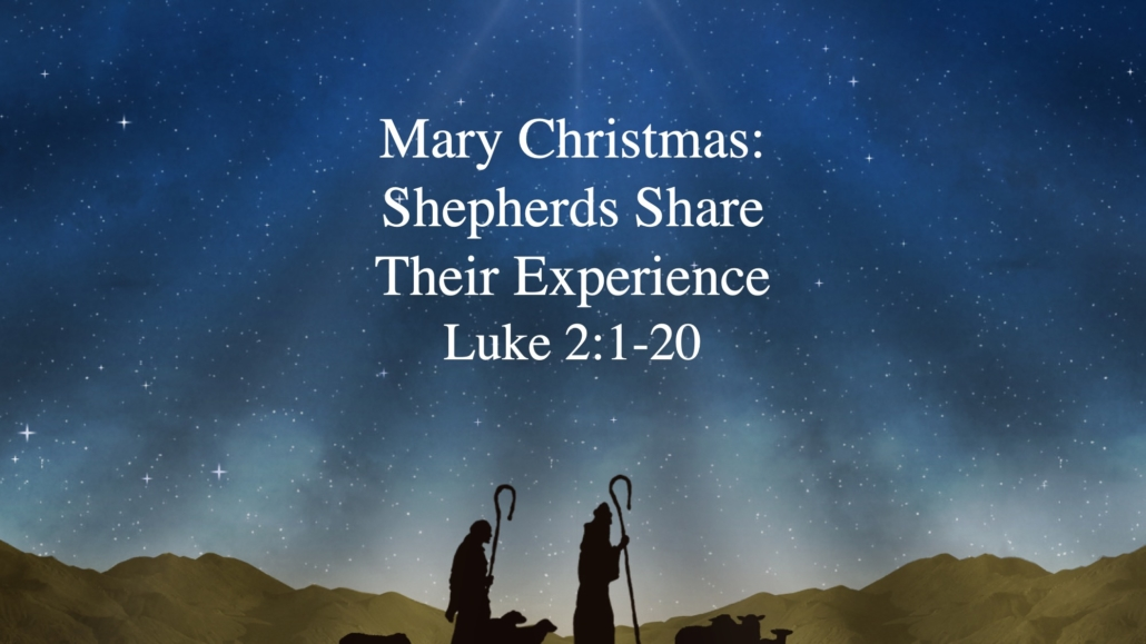 Christmas Shepherds.Mary Christmas Shepherds Share Their Experience
